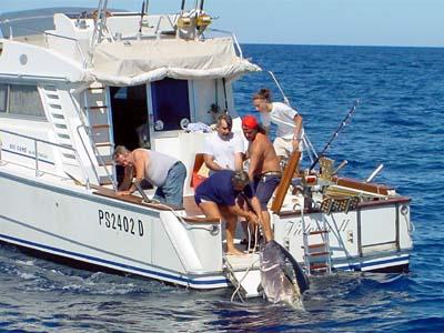 Caratteristiche essenziali di un fisherman per for Barca a vapore per barche da pesca
