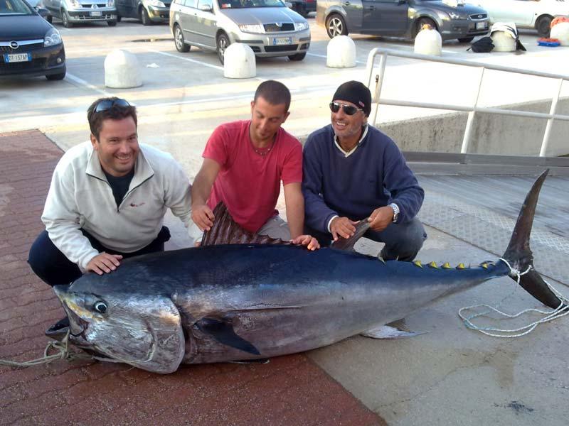 Pesca in drifting al tonno rosso brindisi team lazzaroni pesca in mare dalla barca - Marinare il tonno prima di cucinarlo ...