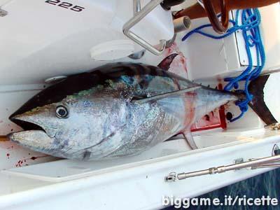 Come cucinare il pesce ricetta del tonno sott 39 olio - Marinare il tonno prima di cucinarlo ...